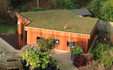 Green Roofing Solutions
